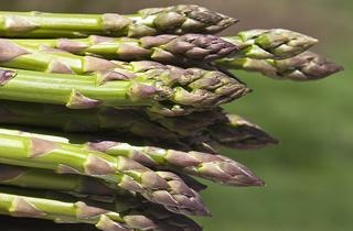... We Love: Asparagus   Seventh Generation- Avocado Asparagus Tartine