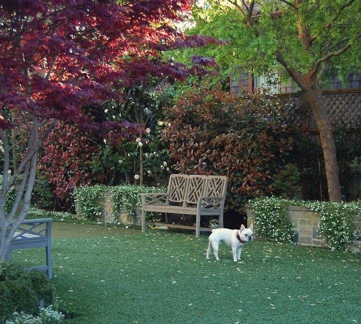 Hardscape Backyard For Dogs : Found on gardenistacom
