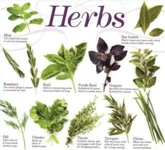 Health Benefits Of Medicinal Plants