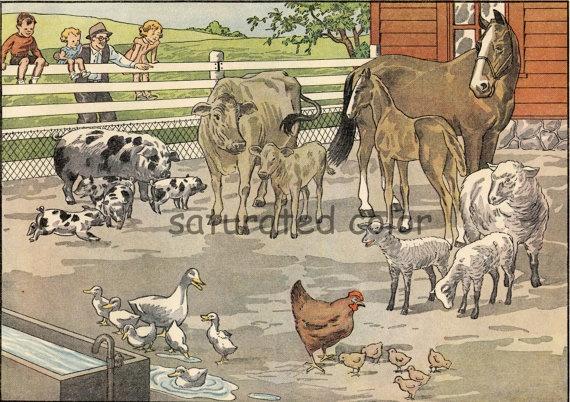 Vintage Baby Farm Animals Little Golden Book 1974 Garth Williams 1970's