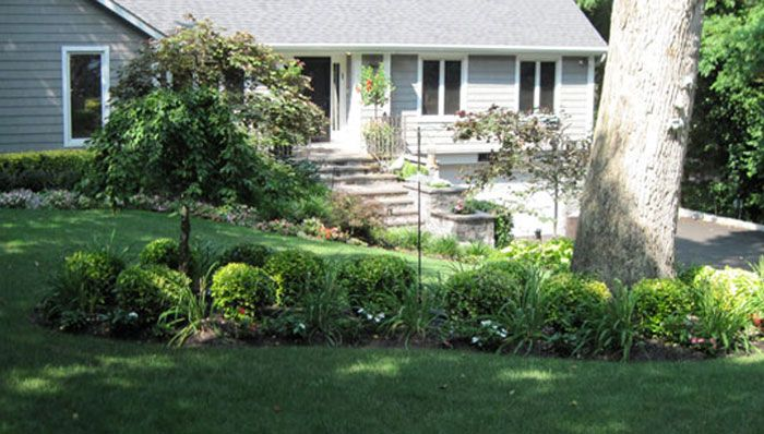Landscaping Ideas For Front Yard Shade : Front bed ideas for trey