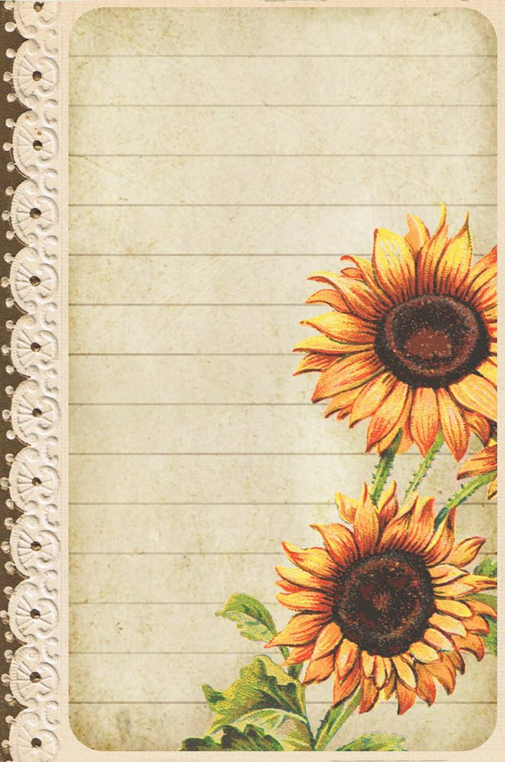 Sunflowers ~ post card sized lined card
