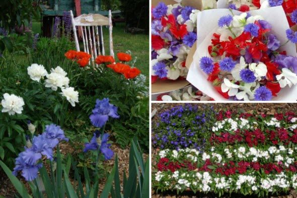 Backyard Party Garden  UncommonGoods Backyard Party  Pinterest