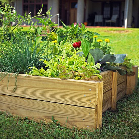 Raised beds are a gardener's dream come true: From weeding to harvesting, in cool climates and waterlogged soils, raised beds remedy a host of problems.  Growing in raised beds means you don't have to bend over as much, saving on your back. The soil warms faster in spring and drains faster in wet weather. What's not to love? So here's how to make your own raised bed.