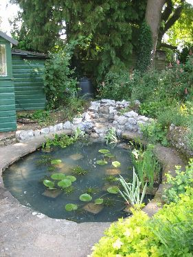 Small pond simple idea dream house pinterest for Tiny garden ponds