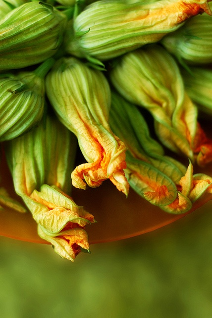 Crispy Spiced Fried Squash Blossoms | Food Photography | Pinterest