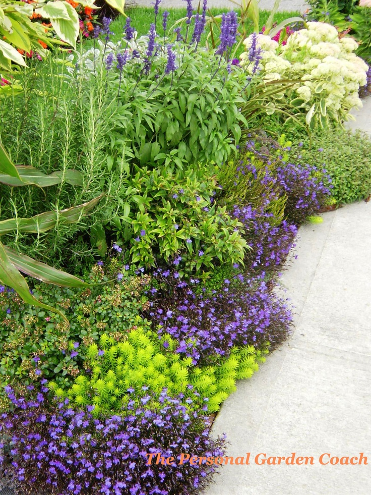 Great garden border design garden border ideas pinterest for Garden border design