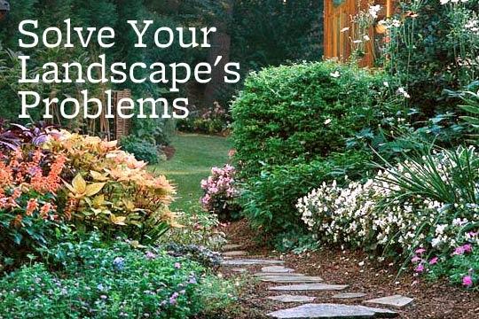 Better Homes And Garden Landscape Ideas Photograph Better