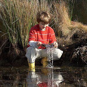 5 Nature Activities for Kids