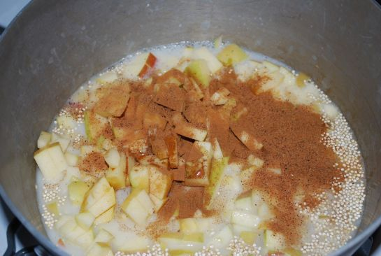 Apple Cinnamon Breakfast Quinoa   Kid Tested Firefighter Approved