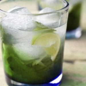 Mexican Mojito - When your mint garden runneth over, it's MOJITO TIME ...