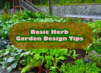 Basic Herb Garden Design Tips gardening BACKyard