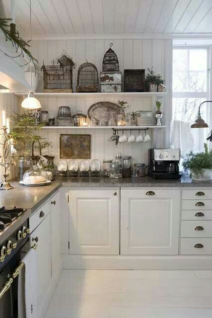 Vintage birdcages--and I LOVE the kitchen!