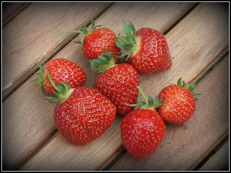 BD Company Strawberries