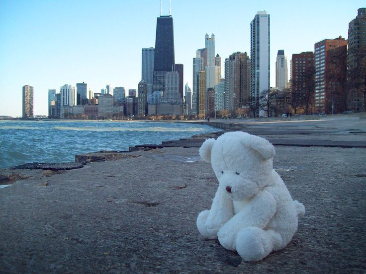 Lonely Teddy IPhone Live Wallpaper Sad Bear Rain