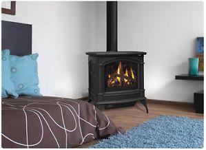 Napoleon Gas Fireplace GDS60 Stove Free Standing Cast Iron