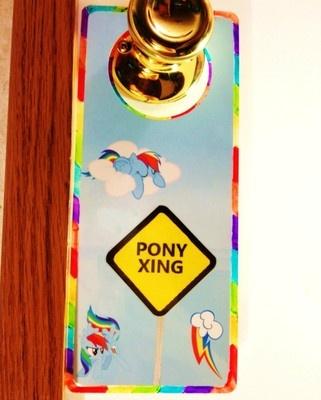 My little pony friendship is magic door sign rainbow dash for My little magic door