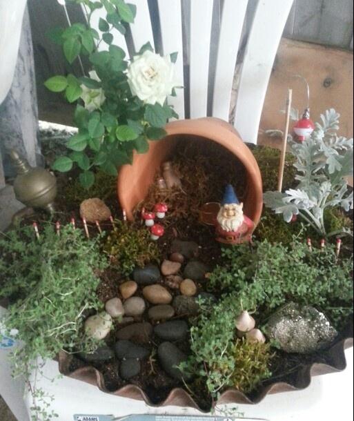 Gnome Mini Garden.   Miniature Fairy, Gnome, Etc. Garden