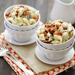 Fontina, Spinach, And Bacon Shells And Cheese Recipes — Dishmaps