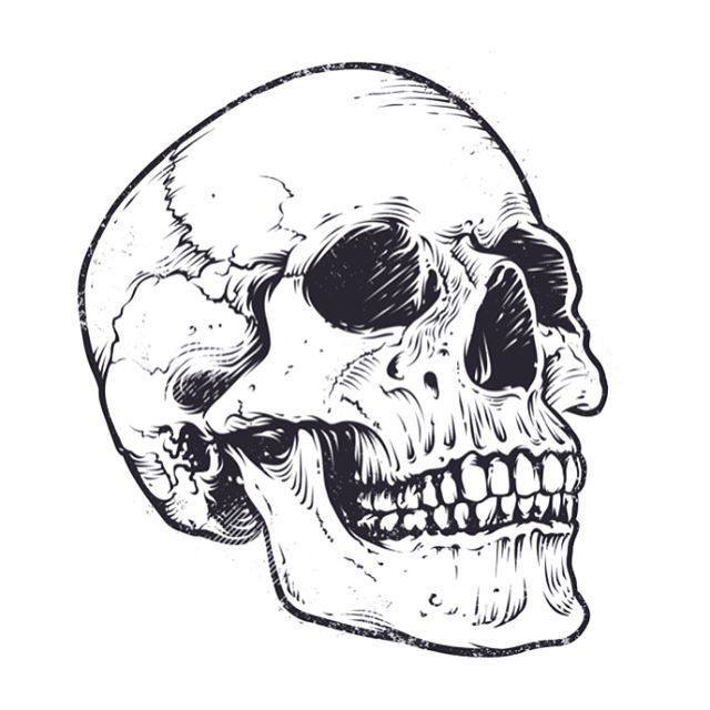 Графический рисунок черепа