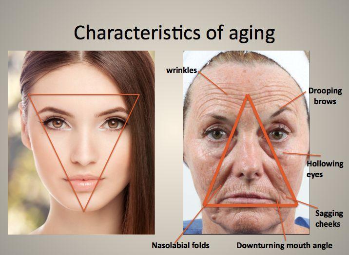 Longest lasting facial fillers