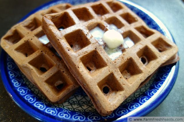 Chocolate Zucchini Waffles--good waffles, but don't really taste ...