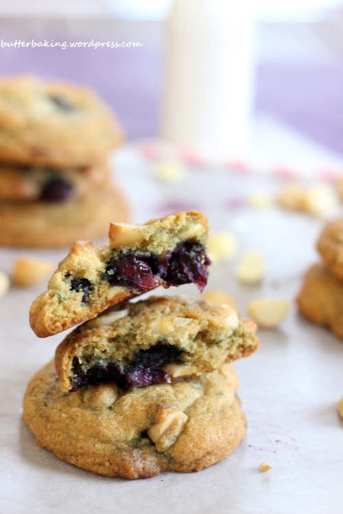 Blueberry, Macadamia and White Chocolate Chip Cookies
