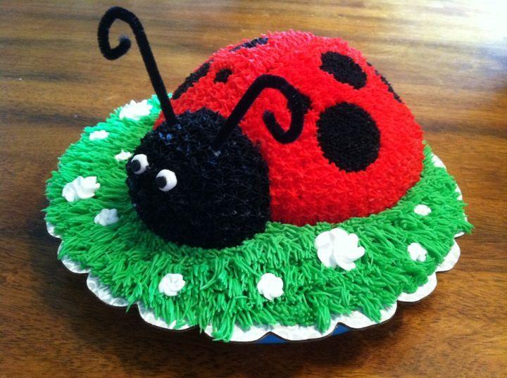 Ladybug Cake Decoration Ideas : Ladybug Cake & Cupcake Ideas (decorating) Pinterest
