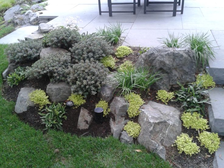Pin by angela shaddy on for the home pinterest Small rock garden
