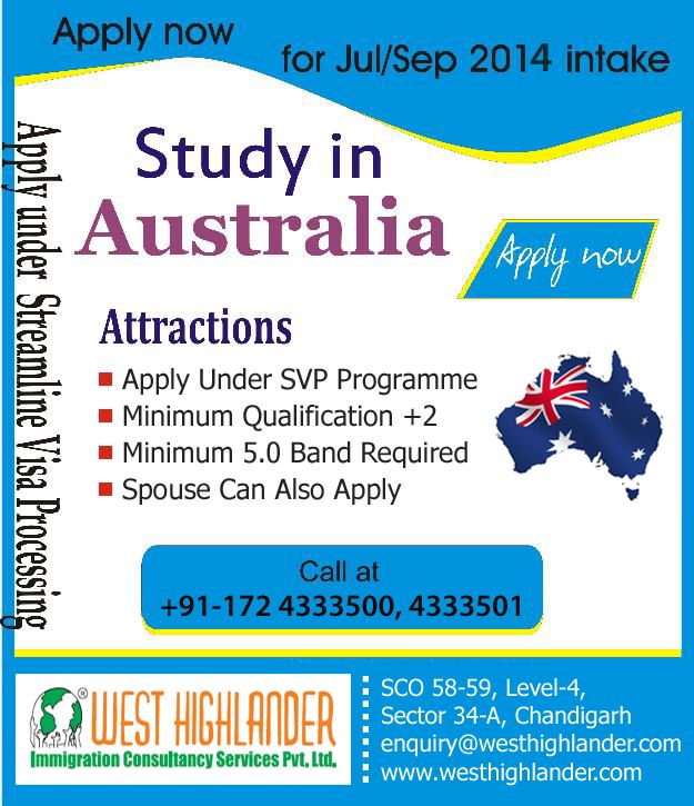 media studies australia reaserch work