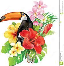 thumbs dreamstime com z tropical-flowers-toucan-butterfly-32515509 jpg