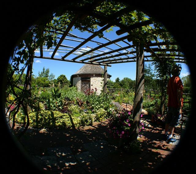 pergola | Garden inspiration | Pinterest