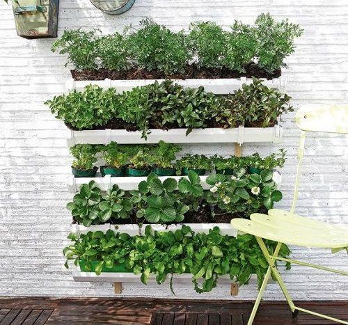 huerto urbano de plantas arom ticas jardineria pinterest