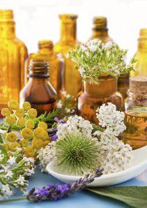 Alternative Medicine And Herbal