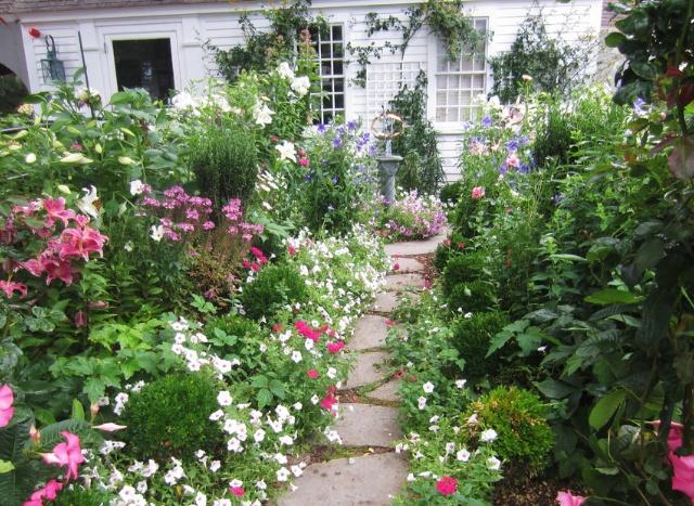 Cottage Garden flowers Pinterest
