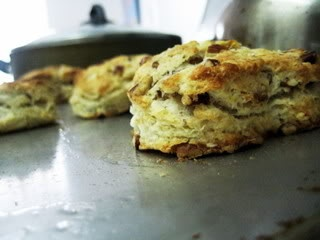 ... in touch my inner Paula | Slow Like Honey.. Pecan Sour Cream Biscuits