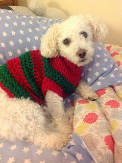 Dog Sweater Free Pattern crocheted pet wear Pinterest