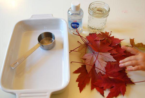 Glycerin Leaves :: Tinkerlab.com