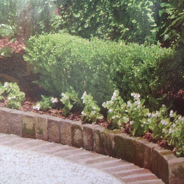Brick garden edging ideas photograph brick edging using th for Brick border garden edging ideas