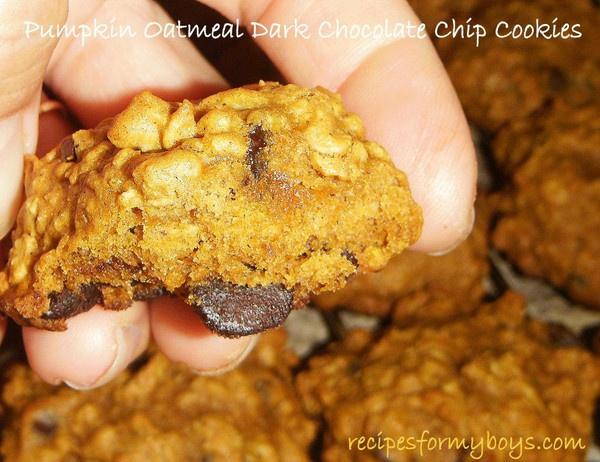 Soft Pumpkin Oatmeal Dark Chocolate Chip Cookies