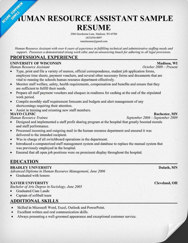 Human Resources Resume Examples | Resume Sample For Hr Assistant