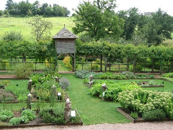 Potager m di val du colombier potager pinterest for Jardin medieval