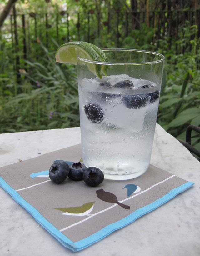 kiwi sparkler tonic kiwi vodka tonic lizablog 06 vodka tonic i had ...
