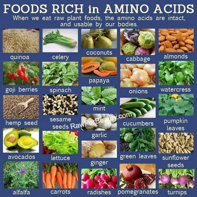 Amino acids nutrition amp well being tips pinterest