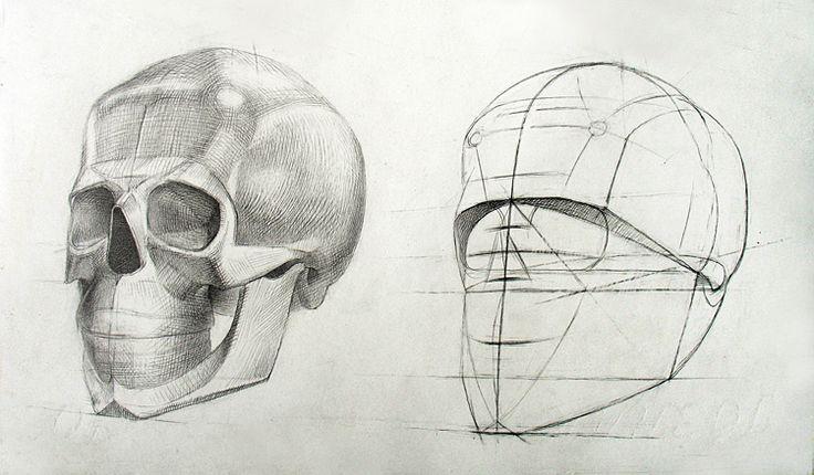 Рисунок черепа человека для художников