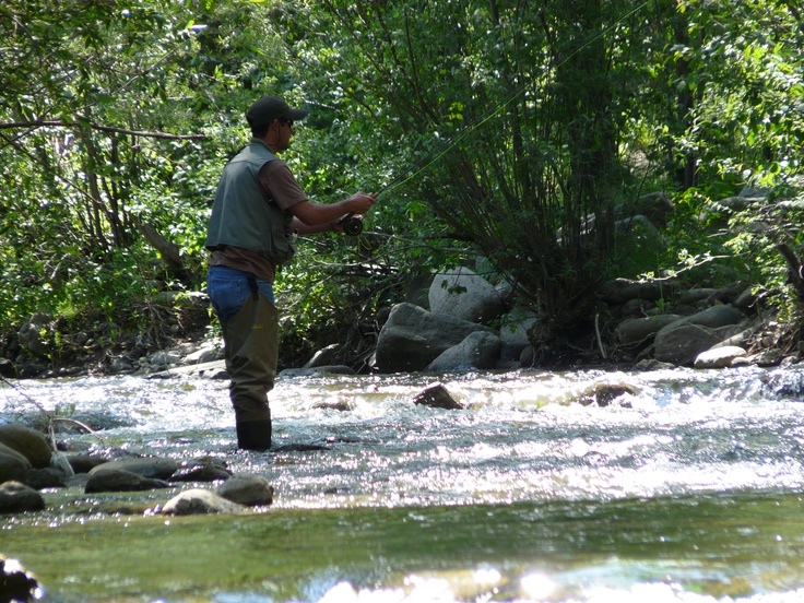 Pin by elmer smith on new mexico trout stream pinterest for Pecos river fishing