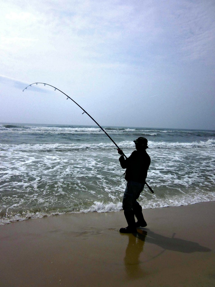 surf fishing on perdido key something fishy pinterest