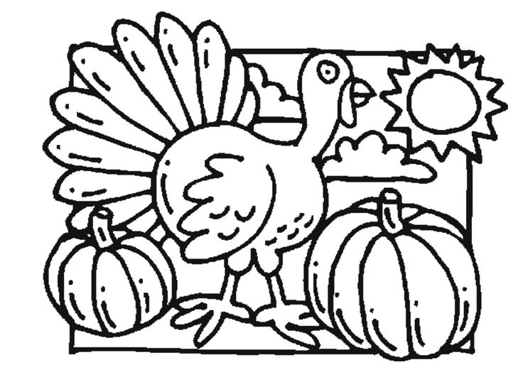 thanksgiving pumpkins coloring pages - photo#29