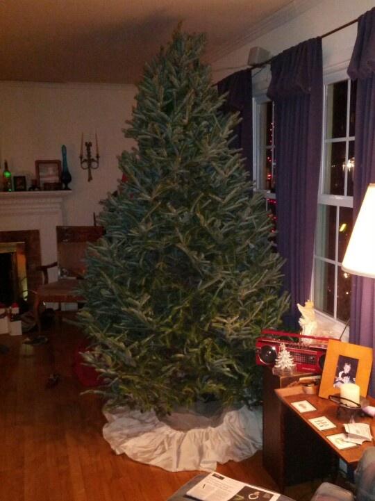 Wedding dress christmas tree skirt 25 years later janet guse