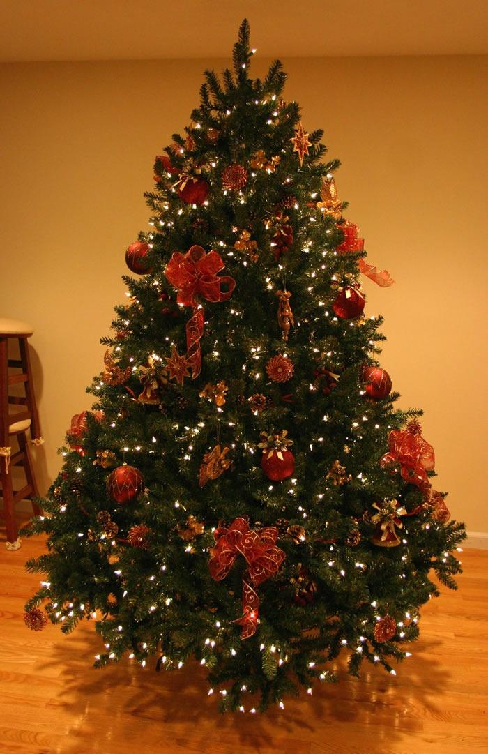 Bird themed christmas tree bing images o christmas tree